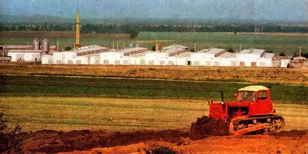 1975 - Industrielle Milchproduktionsanlage für 1930 Kühe