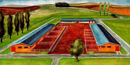 1975 - Rinderfarm mit 290 Tierplätzen